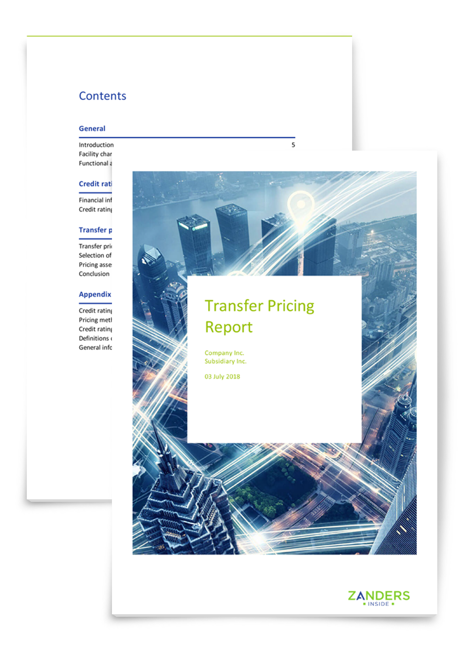 Transfer Pricing Report
